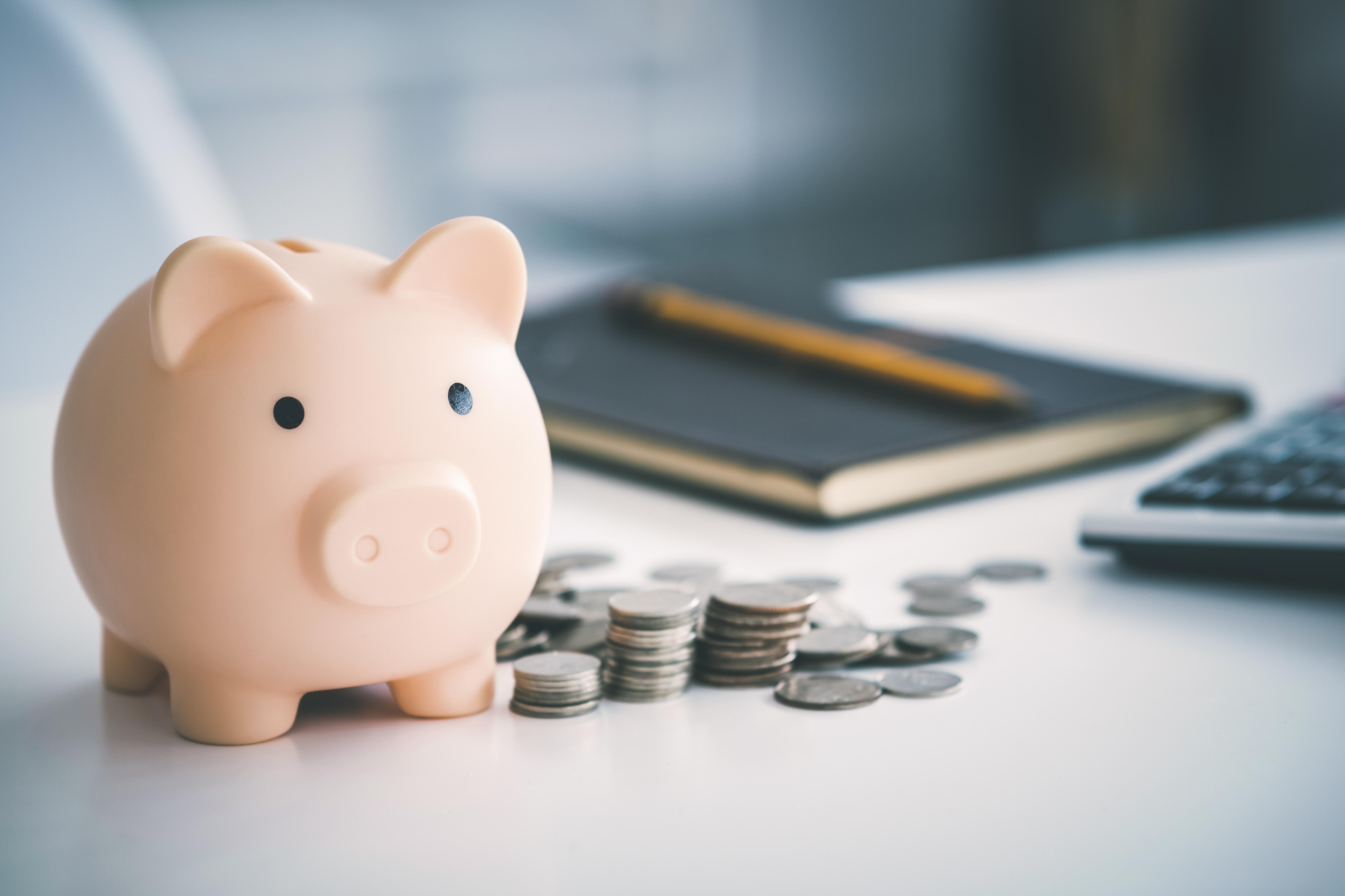 pig-bank-and-money-2021-06-07-17-19-29-utc